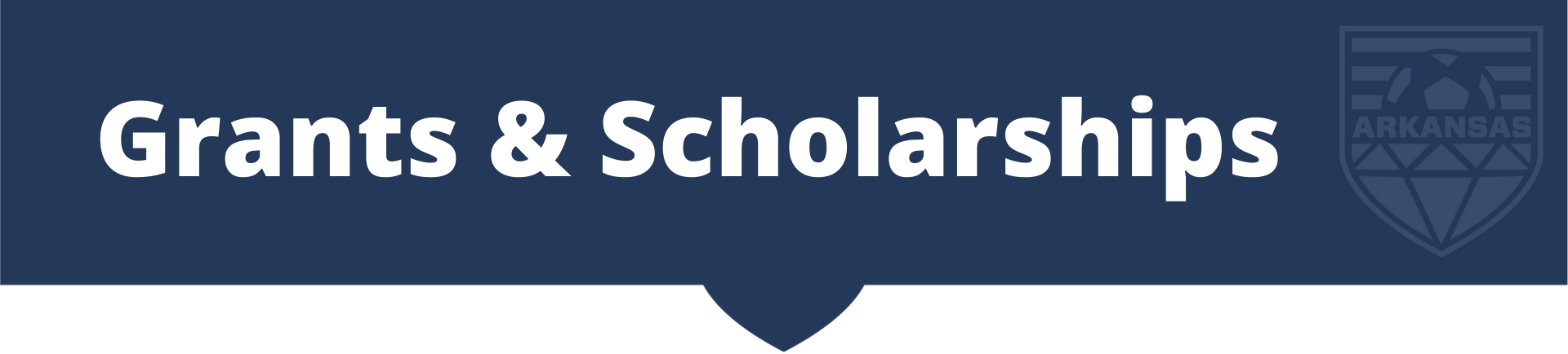 Grants__scholarships